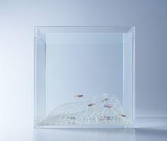 Aquariums Filled With 3D Printed Flora by Designer Haruka Misawa