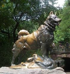 Balto statue in Central Park... Was on my Bucket List to see. I'm glad to say I got to make that become a reality :). It was a real high-lite for me :).