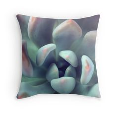New to aprilbernphoto on Etsy: Succulent Decorative Throw Pillow Cover Fine Art Photography Pillow Case Pink Succulent (40.00 USD)