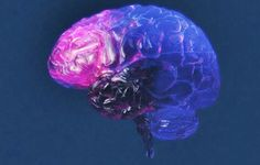 New research indicates that autologous stem cell therapy has positive results when used to treat traumatic brain injuries in children #stemcells #stemcellnews
