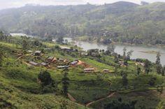 Plantaciones de té Sri Lanka Hill Country. Descubre con nosotros las mágicas tierras del #té en #SriLanka, su verdor y su gente nos encantó. #TeaPlantations #travel #Viajes