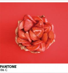 Meals based on pantone colors. SOO cool! Alison Anselot | Trendland: Fashion Blog & Trend Magazine