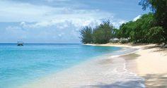 Le bonheur est à la Barbade (2010)
