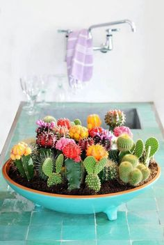 A cactus is a superb means to bring in a all-natural element to your house and workplace. The flowers of several succulents and cactus are clearly, their crowning glory. Cactus can be cute decor ideas for your room. Mini Cactus Garden, Succulent Gardening, Cacti And Succulents, Garden Plants, Cactus Planters, Plants Indoor, Cactus Decor, Cactus Centerpiece, Tiny Cactus