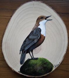 Arte Naturalista, Wooden Slices, Acrylic Art, Bird Art, Beautiful Birds, Painting On Wood, Colored Pencils, Wood Crafts, Folk Art