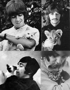 George Ringo John and Paul. And kitties. I hear my childhood filled with Beatles music and kitty cats. Crazy Cat Lady, Crazy Cats, I Love Cats, Cool Cats, The Beatles, Celebrities With Cats, Celebs, Men With Cats, Animal Gato