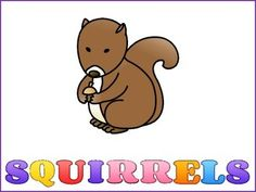 There are 4 graphic organizers to choose from. Squirrels -Can - Have - AreBubble Map with a squirrel in the middle - can be use for adjectivesAn organizer for drawing a picture and writing or drawing 3 things about squirrels.An organizer for drawing a picture and writing 3 facts about squirrels.There is also a colorful Can, Have, Are to make a whole class chart.Below are some other products you may like.