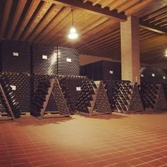 "@Ronco Calino Franciacorta's photo: ""Venite a visitare la nostra cantina! È magica! Come and visit our winery! It's magical! #roncocalino #franciacorta #vino #wine #italianwine #sparklingwine #italy #italia #lovewine #winelovers #winery #cellar #winemaking #instavino #instavinho #instawine #instapic #wineporn #bestoftheday #newyork #brescia #zurich #belgium #japan #bottle #pic #popularpic"""