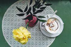 Królestwo sukulentów: palmiarnia w Wałbrzychu - Rykoszetka o życiu w mieście kawa coffee