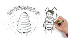 Včely – NEZkreslená věda IV (CENSORED :)) Make It Yourself, Bees, Youtube, Wood Bees, Youtube Movies