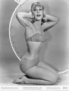 Barbara Eden! I dream of Jeanie!!