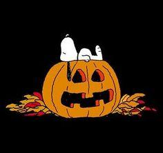 Snoopy, lounging on a jack o'lantern