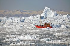 """Icebergs, near Ilulissat, Greenland. Ilulissat is located at 69°13′N, 51°06′W and about 200 kilometres north of the Arctic Circle. In translation Ilulissat is the Greenlandic word for """"The Icebergs"""". """"Ilulissat Icefjord"""" was added to Unesco's World Heritage List in 2004."""