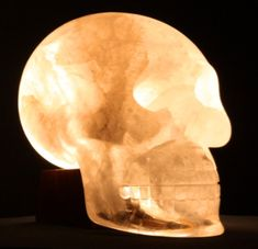 ✿ EINSTEIN ✿ The Skull of Consciousness | This particular crystal skull had been kept private for decades, making its first official public appearance on October, 10, 2010 at the 10-10-10 Crystal Skull gathering in New York City in conjunction with the Edgar Cayce Association for Research and Enlightenment.