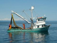 Salmon troller wins award for Best Boat This is a seiner not a troller