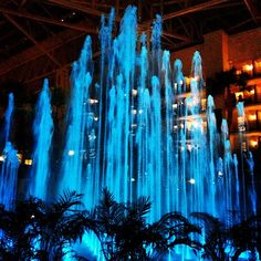 Instagram photo of the water show at Gaylord Opryland