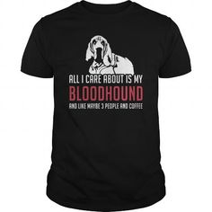 Bloodhound all i care about is my Bloodhound and like maybe 3 people and coffee #Bloodhound�