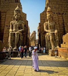 Colossal statues of Ramses II (19th Dynasty) wearing the Pshent crown flank the entrance to Luxor Temple. The double crown symbolizes the two regions of upper and lower Egypt.  Egypt  Доступ к нашему сайту намного больше информации   https://storelatina.com/egypt/travelling #egyptimages #egyptholidays #egyptfacts #egyptpopulation