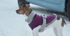 Stickat hundtäcke - Diagnos:Kreativ