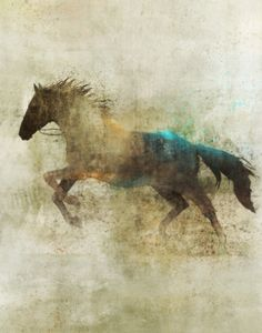 Run, horse, hest, animal, drawing, fantasy art, beautiful, gorgeous,