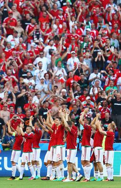 Hungary players and supporters celebrate winning the group F and going through to the knockout stage after their draw in the UEFA EURO 2016 Group. World Football, Football Soccer, Uefa Euro 2016, 2016 Pictures, European Championships, World Of Sports, Pro Cycling, Hungary, Nfl