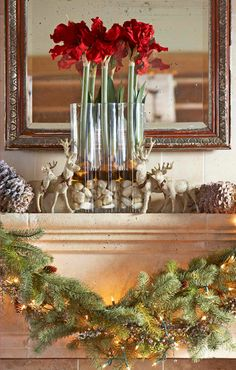42 Simple Holiday Decorating Tips - Traditional Home® Gotta get me some Amaryllis this season