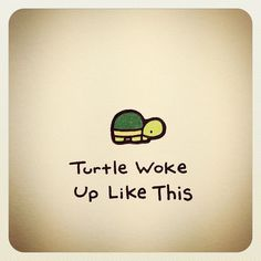Turtle Wayne @turtlewayne Turtle Woke Up Li...Instagram photo | Websta (Webstagram)