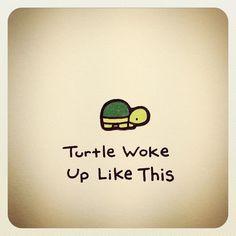 Turtle woke up like this. Cute Turtle Drawings, Animal Drawings, Cute Drawings, Tiny Turtle, Turtle Love, Cute Turtles, Baby Turtles, Amazing Drawings, Amazing Art