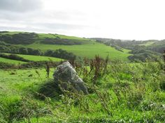Standing stone in Northern Devon. Devon was the last Celtic stronghold in present day England to be conquered by the Anglo-Saxons. It was not claimed by the Saxons of Wessex until the 9th century, decades before Cornwall. The Celts of Devon and Cornwall were called Wealcynn (foreigner). The Romans named the south-west peninsular the Brythonic nation, Dumnonia. Today, up to 75% of people in southern England have Celtic ancestry.  Will Devon reclaim its Celtic history?