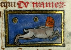 Perhaps a rabbit ? wearing a great helm. Thomas of Cantimpré, Liber de natura rerum, France ca. 1290. Valenciennes, Bibliothèque municipale, ms. 320, fol. 79v