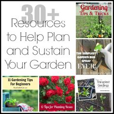 30+ Resources to Help Plan and Sustain Your Garden | LifeAfterLaundry.com