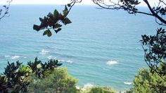 statiunea-nisipurile-de-aur-marea-neagra-TOMIS-TRAVEL Aur, Outdoor, Littoral Zone, Outdoors, Outdoor Games, The Great Outdoors