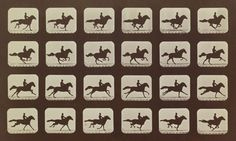 Edward Muybridge - Proving that horses legs all leave the ground at one point when they are galloping.
