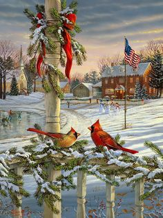 wildlife artist SAM TIMM...Cardinals--especially male, were special to my son, who has passed on.