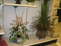 Everyday greenery/orchid arrangements