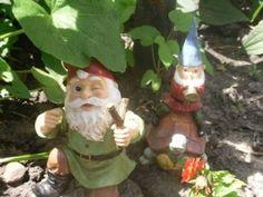 I need a gnome.
