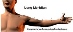 Lung Meridian Pathway and Acupuncture Point Locations.