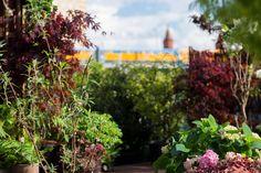 Märchenwald trifft auf Großstadt – das war das Motto des Pflanzenfreude.de Schrebergarten Deluxe an der Oberbaumbrücke. Mehr dazu nach dem Klick.