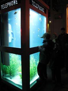La Cabine Téléphonique Aquarium