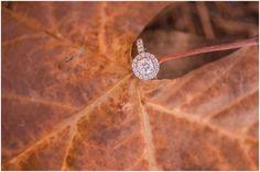 The Engagement Ring Shot!!- Oak Grove Park Engagement Session - #ElizabethHensonPhotos #virginiaweddingphotographer #EngagementRing
