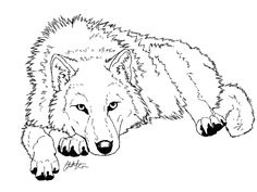 -:Resting Wolf Lineart:- by Colette-Anderson on DeviantArt