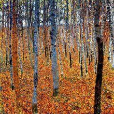 random beauty | s0irenic: Gustav Klimt - (1902) - Beech Forest