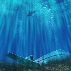 The Bermuda Triangle sometimes also referred to as the Devils
