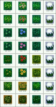All flowers/bushes in Animal Crossing New Leaf; All flowers/bushes in Animal Crossing New Leaf; – image is only of bushes, link contains list Related posts:ACNL bonsaiSally The Rag Doll - Animal Crossing New Leaf. Animal Crossing 3ds, Animal Crossing Hair Guide, Animal Games, My Animal, Funny Animal, Acnl Flower Guide, New Leaf Hair Guide, Acnl Paths, Fairy Tail