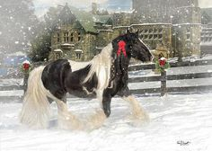 The Christmas Pony Poster By Fran J Scott