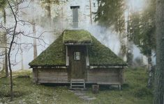 Swedish Cabin - refuge from the storm.