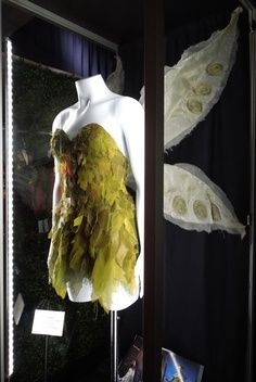 Tina Fey Tinker Bell fairy costume | best stuff