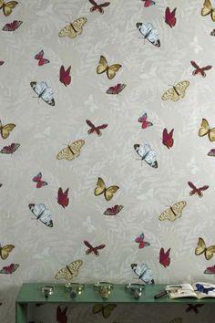 Nina Campbell - Farfalla Wallpaper