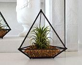 Tabletop Glass Pyramid Airplant Planter