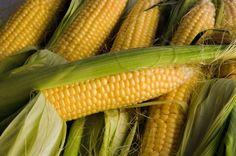 US Farmers Launch Billion Dollar Suit Against Syngenta.  FINALLY!!!   http://foodrevolution.org/blog/us-farmers-launch-billion-dollar-suit-syngenta/